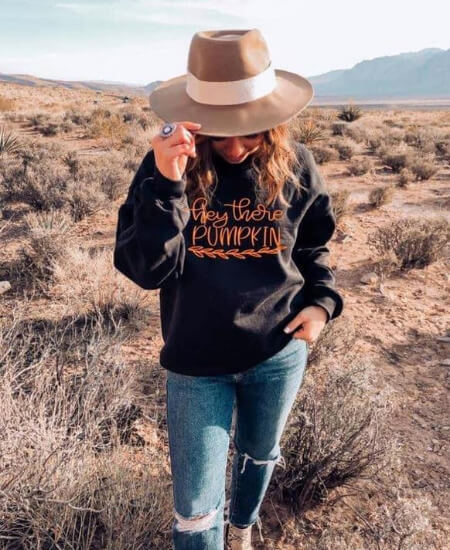 Edgy Cowgirl || Hey There Pumpkin Sweatshirt & Tee Shirt $24.99